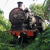 steam, 20 196 at Sombor on 24th September 2016 (2)