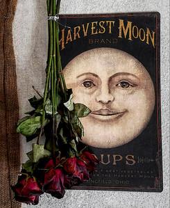 """ Harvest Moon Soups ... """