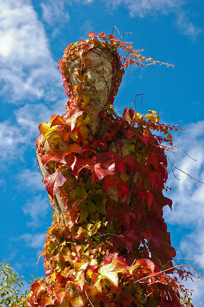 A local statute encircled with the colors of autumn.
