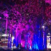Trees lit up during festival.