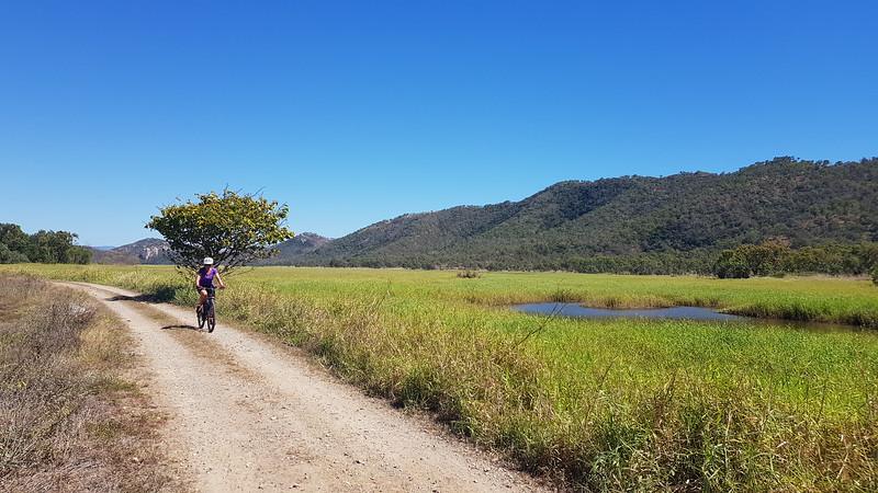 Ride along the wetlands