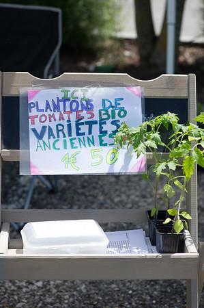 PLANT15-056