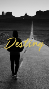 Destiny - iPhone