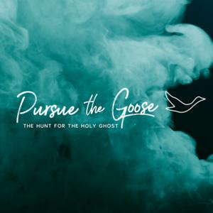 Pursue the Goose