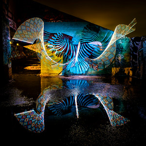Eagle light painting