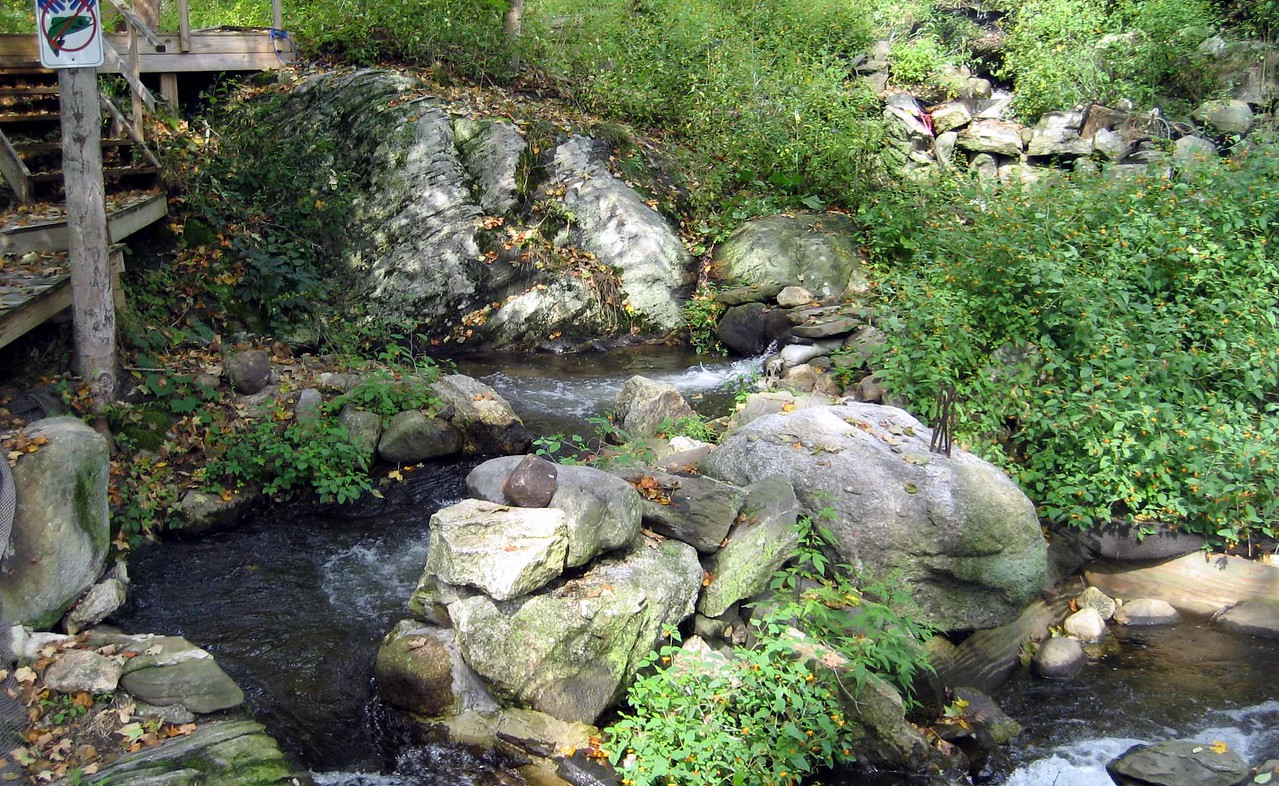"""Up or down, this story centers around the oldest fish ladder in the US at Damariscotta Mills, ME. Damariscotta derives from Algonquin 'Madamescontee' -- place of many alewives/fish.<br /> <br /> More on the ladder and annual Alewife Festival: <a href=""""https://damariscottamills.org/"""">https://damariscottamills.org/</a>"""