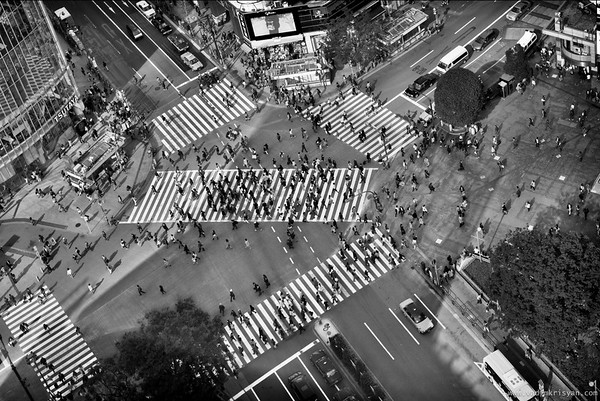 Shibuya Crossing, Japan, 2014