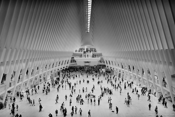 WTC, The Oculus, New York, 2016