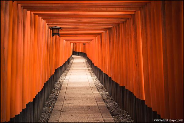 Toriis at Fushimini Inari, Kyoto,2014