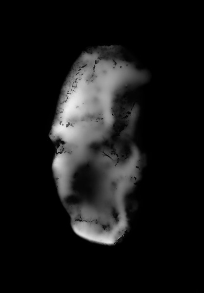création argentique (monotype) 30x40 cm