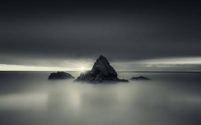 Gray Whale Cove