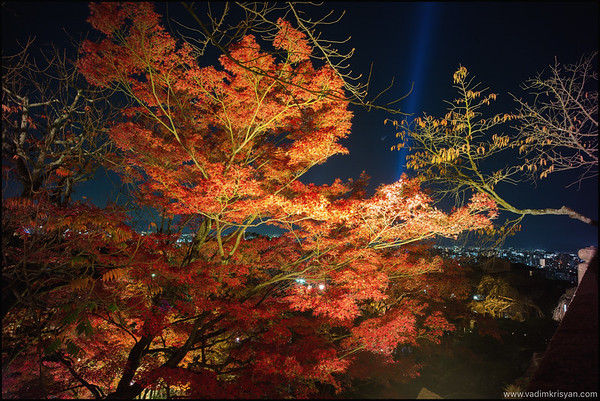 Kiyomizu Dera Temple, Foliage Night Illumination, Kytoto,2015