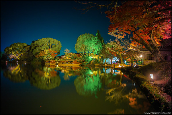 Daikaku-Ji Temple, Foliage Night Illumination, Kytoto,2015