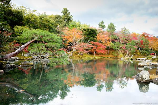 Tenryuji Temple, Kyoto, 2015