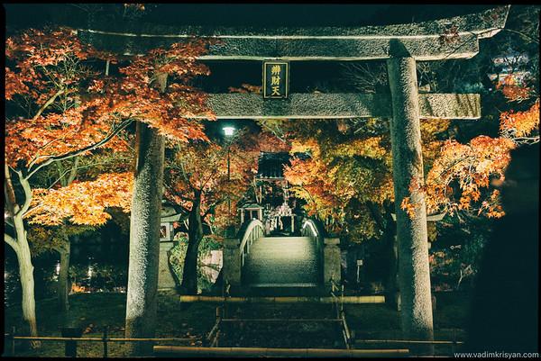 Eikan-Do Temple, Foliage Night Illumination, Kytoto,2015