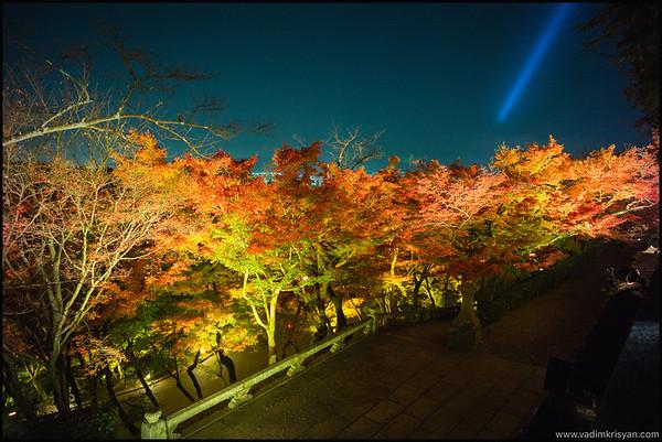 Kiyomizu Dera Temple, Foliage Night Illumination, Kytoto,2015