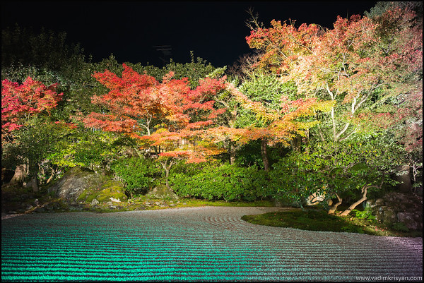 Entoku-In Temple, Foliage Night Illumination, Kytoto,2015