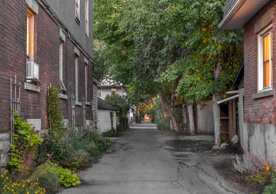 Woodbine Lane, Old Ottawa South_5229