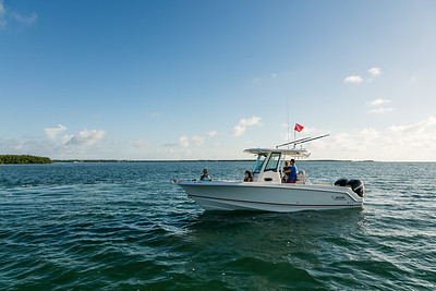 250 Outrage - Boston Whaler