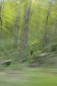 Panning from the Passenger Window No. 10