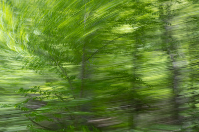 Panning from the Passenger Window No. 3