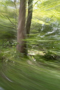 Panning from the Passenger Window No. 5