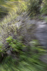 Panning from the Passenger Window No. 8