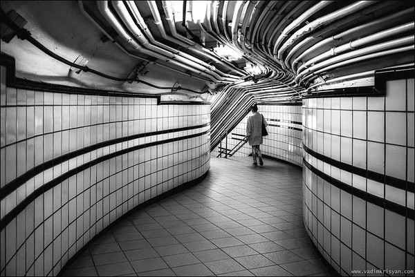 Curves and Lines, New York, 2016
