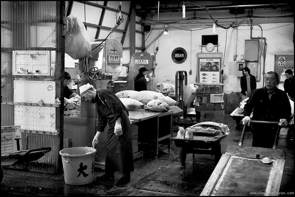 Auctioned frozen Tuna to be cut into smaller pieces, Tsukiji Markets, Tokyo,2014