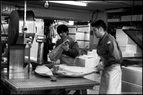 Scaling & Packing Tuna Frozen blocks, Tsukiji Markets, 2014