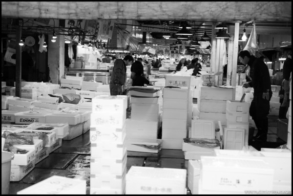 Tsukiji Secondary Market in the Morning, Tokyo,2014
