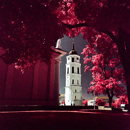 Bell Tower of Vilnius Cathedral, Vilnius [2017]