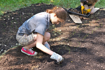 City Serve 2012: Making a community garden at Cudell