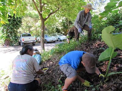 2015-09-12 Hawaii Nature Center