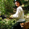 NHPS treasurer Becky Lau at work weeding