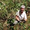 Janet Allen weeding