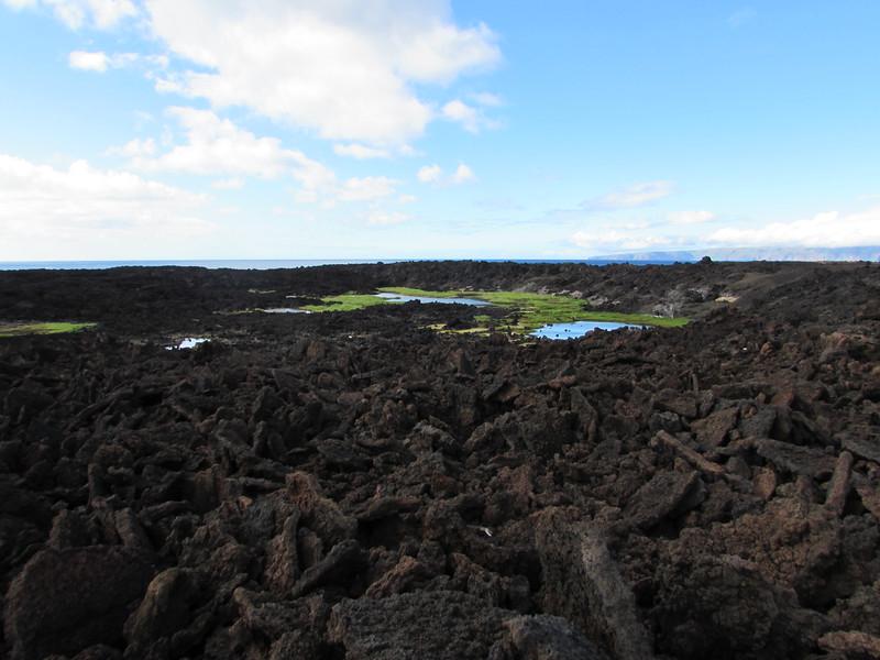 First view of Kauhioaiakini.