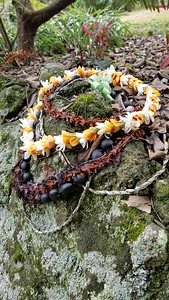 The ho'okupu rock. The fresh lei donated by Mia Charleston. (Photo by Elena Newhouse)