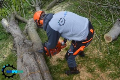 Tree Surgery & Pole-Saw