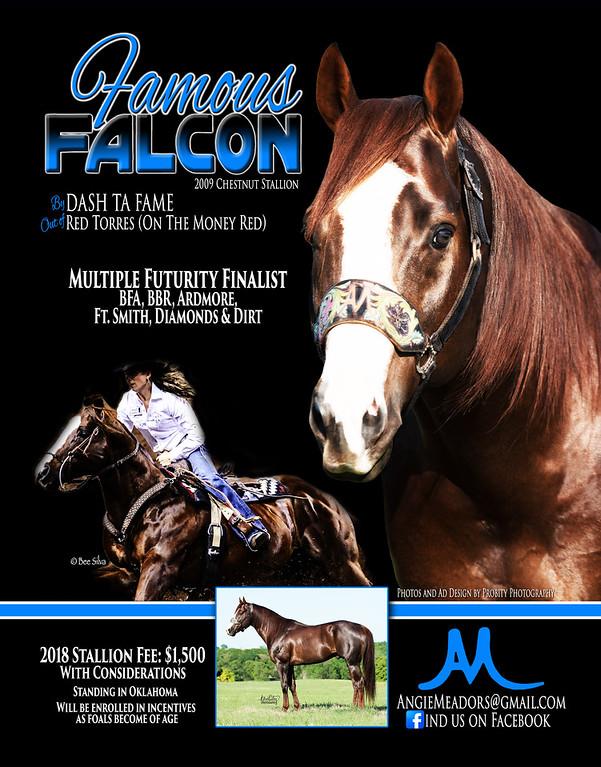 Famous Falcon