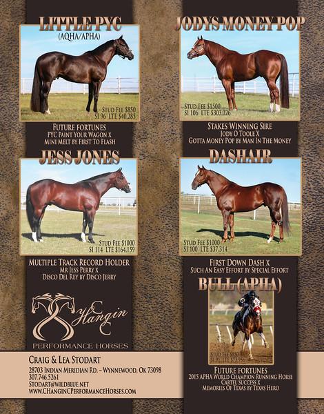 C Hangin C Performance Horses