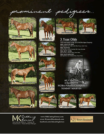 MK Cutting Horses sale ad