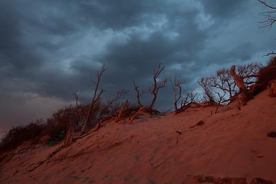 Red Dunes  1/9