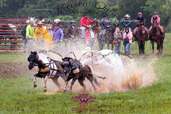 Order # 528A9121___Saturday races__©Porch Pig Productions