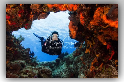 Diver with Coral (2)