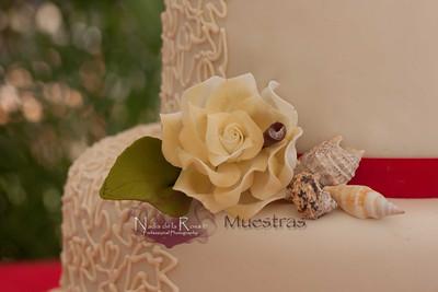 _MG_5344_January 22, 2012_Boda Radhis y Rafael