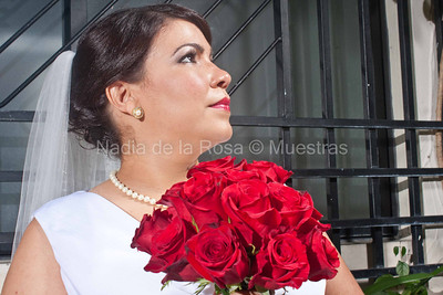 _MG_1515_July 16, 2011_Laura y Alejandro