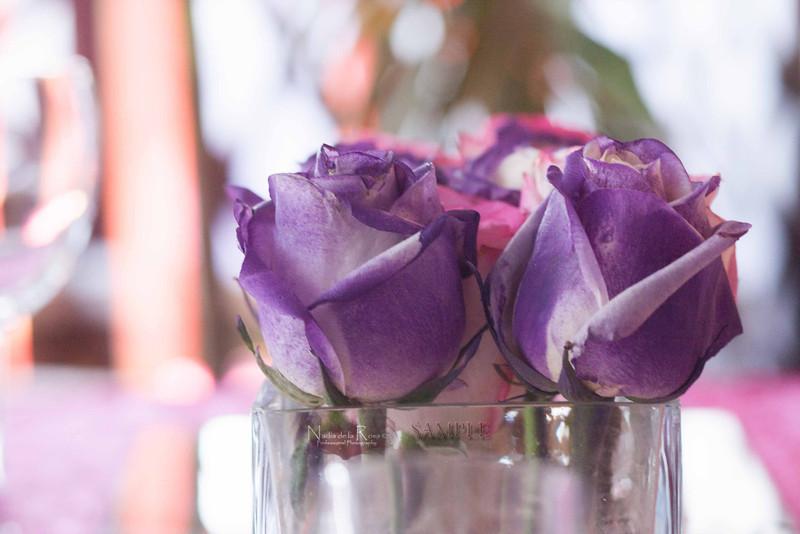 IMG_1753 July 22, 2012Melissa y Edward Wedding Day