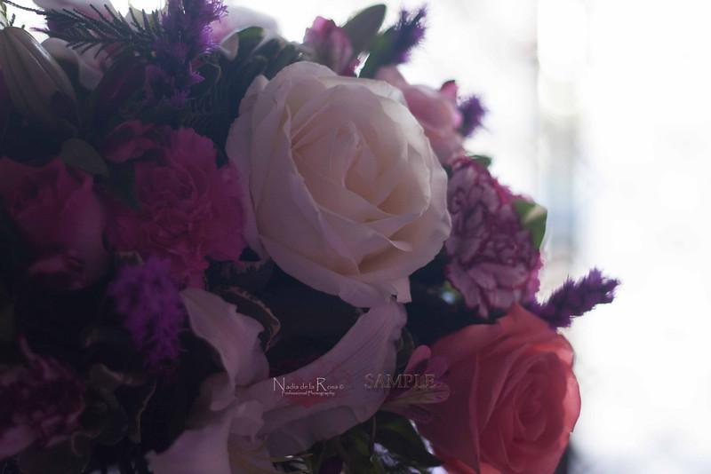 IMG_1787 July 22, 2012Melissa y Edward Wedding Day