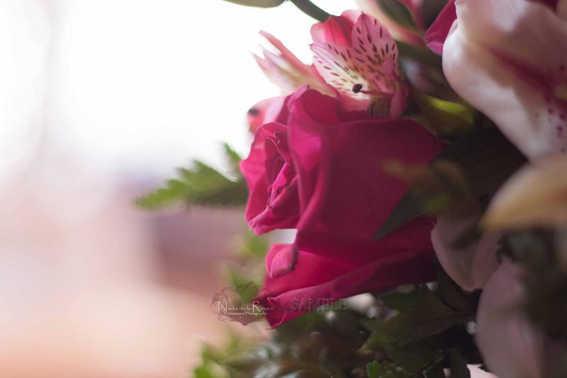 IMG_1794 July 22, 2012Melissa y Edward Wedding Day